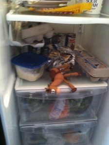 hmm not sure how he made it into the fridge...